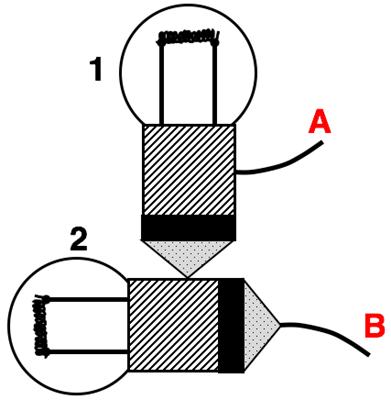 Light Bulb Anatomy Questions